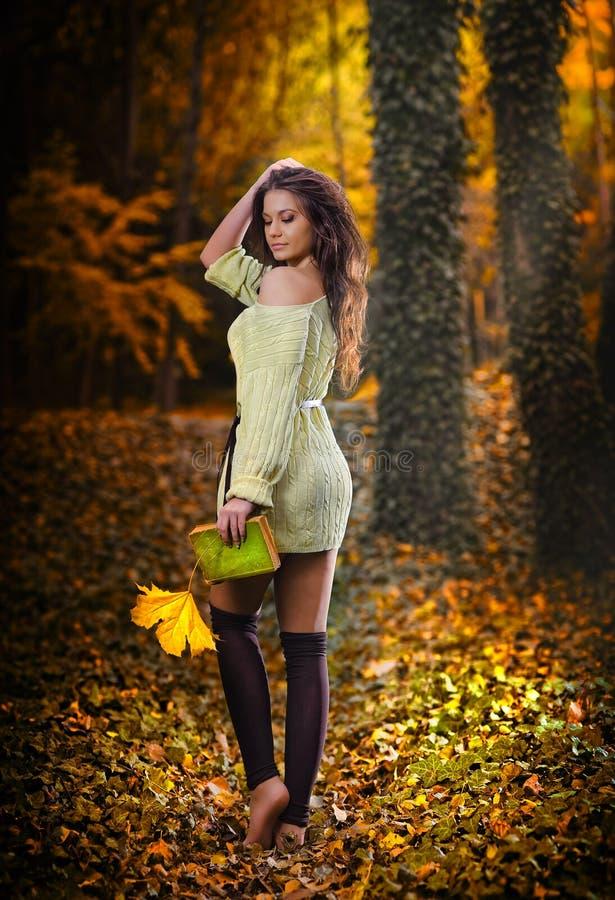 Jeune femme sensuelle caucasienne dans un paysage romantique d'automne. Dame de chute. Façonnez le portrait d'une belle jeune femm photographie stock libre de droits
