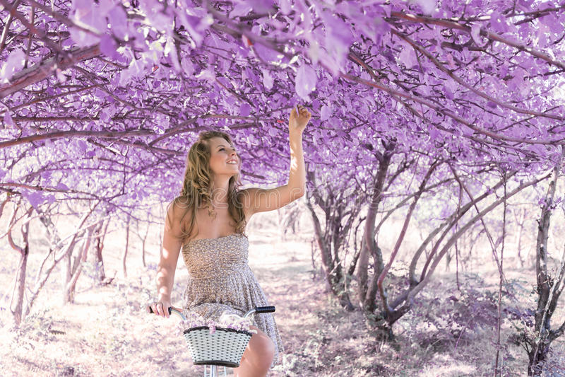 Jeune femme sur la bicyclette dans la forêt de rose d'imagination image stock