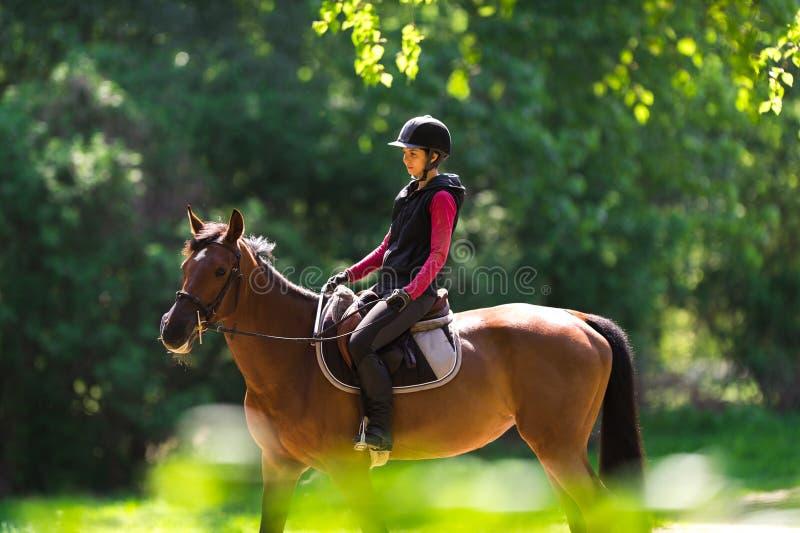 Jeune femme sur un tour de cheval photo libre de droits