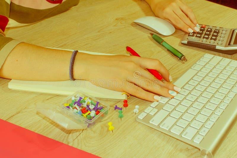 Jeune femme travaillant dans le bureau, se reposant au bureau, utilisant l'ordinateur image stock