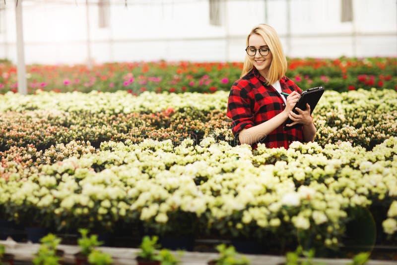 Jeune femme travaillant en serre chaude Fleurs attrayantes de contr?le et de compte de fille, utilisant la tablette images stock