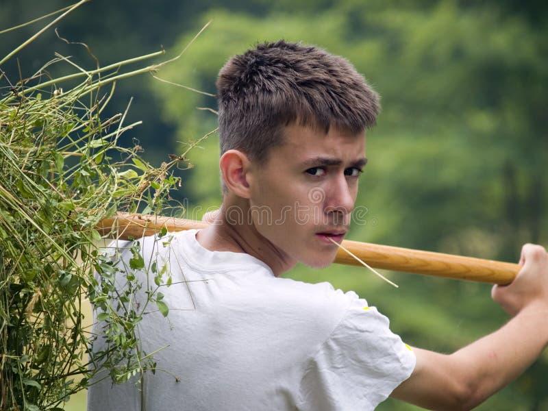 Jeune fermier photos libres de droits