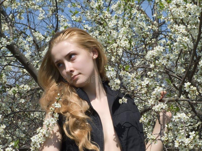 Jeune fille photographie stock libre de droits