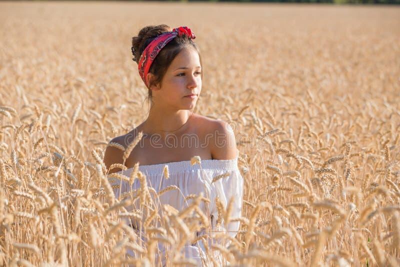 Jeune fille adorable sur le champ de blé d'or image libre de droits