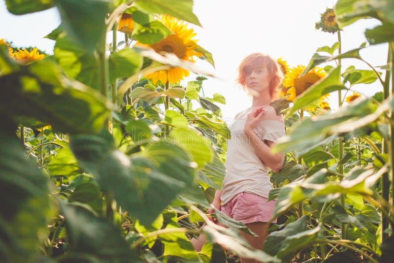 Jeune fille appr?ciant la nature sur le champ des tournesols au coucher du soleil, portrait de la belle fille de femme de roux av photos stock