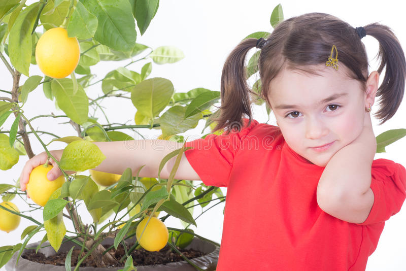 Jeune fille avec le citronnier photos stock