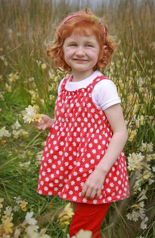 Jeune fille avec les cheveux rouges bouclés dans le domaine des wildflowers photos libres de droits