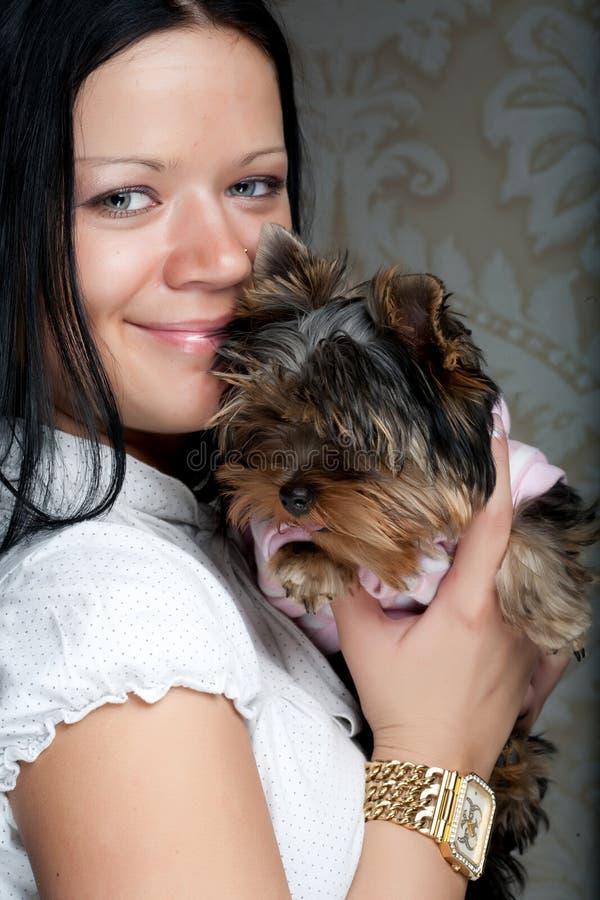Jeune fille avec son chiot de Yorkie images stock
