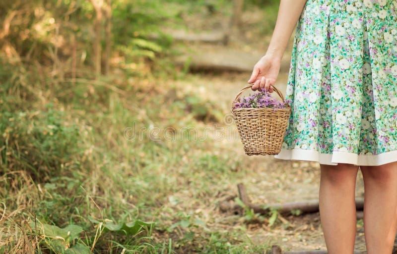Jeune fille avec un panier des fleurs image libre de droits