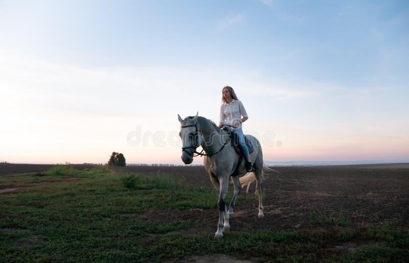 Jeune fille blonde montant sur un cheval sur le champ pendant le coucher du soleil photo libre de droits