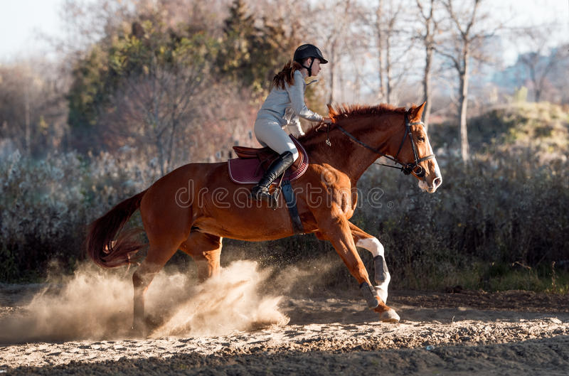 Jeune fille conduisant un cheval photo stock