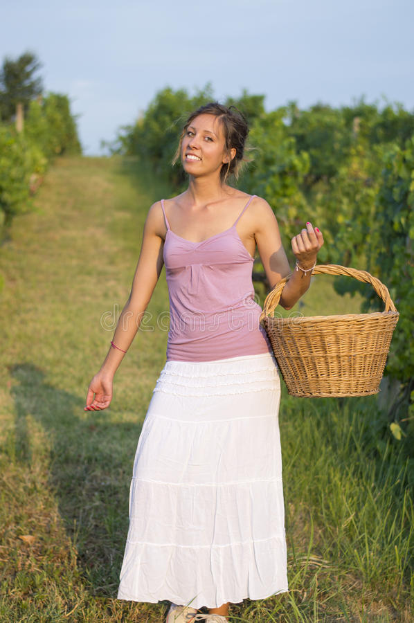 Jeune fille dans la récolte de raisin avec le grand panier en osier pour stocker g photographie stock
