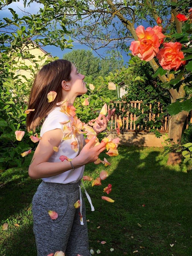 Jeune fille dans la roseraie images libres de droits