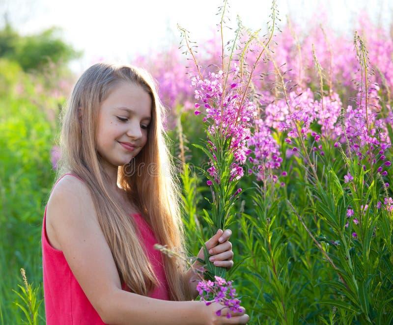 Jeune fille de beauté sur le pré image libre de droits