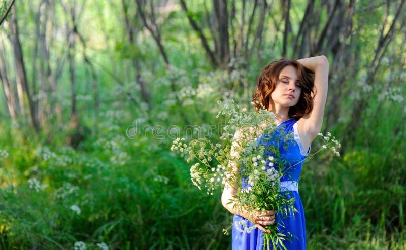 Jeune fille de brune dans la robe bleue posant avec le bouquet des wildflowers en parc image stock
