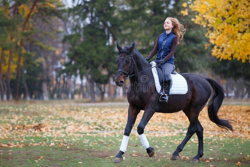 Jeune fille de cavalier galopant sur l'étalon de baie en parc image stock