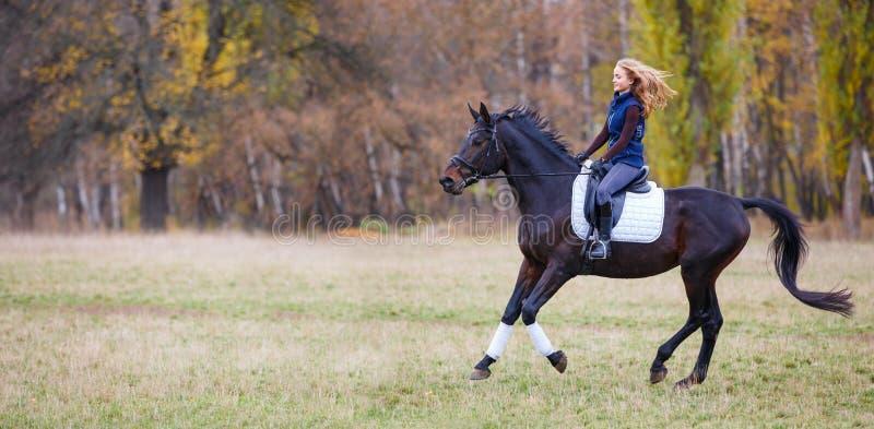 Jeune fille de cavalier galopant sur l'étalon de baie en parc image libre de droits