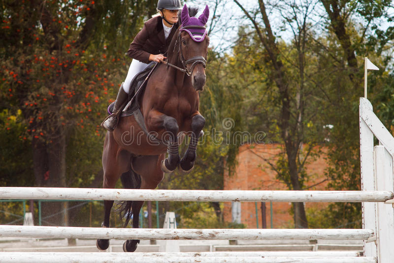 Jeune fille de cavalier sautant par-dessus barier sur son cours image stock