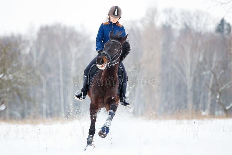 Jeune fille de cavalier sur le cheval de baie galopant en hiver photographie stock libre de droits
