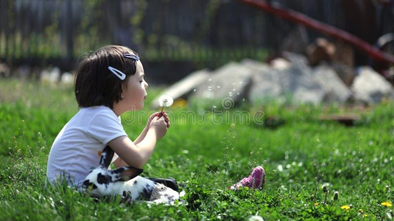 Jeune fille mignonne avec le lapin soufflant un pissenlit photos stock
