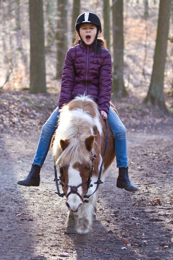 Jeune fille montant un poney image stock