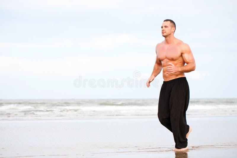Jeune fonctionnement musculaire beau d'homme photos libres de droits