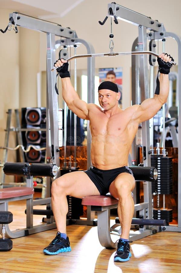 Jeune formation de bodybuilder en gymnastique images libres de droits