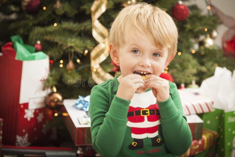 Jeune garçon appréciant le matin de Noël près de l'arbre images libres de droits