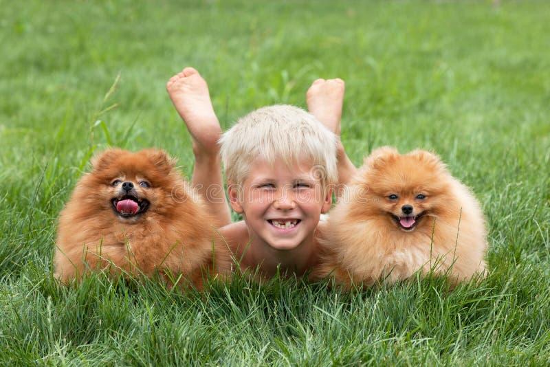Jeune garçon avec deux crabots photos libres de droits