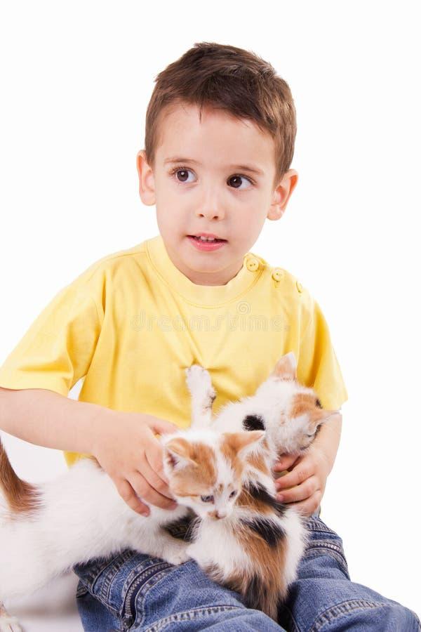 Jeune garçon avec le chat images libres de droits