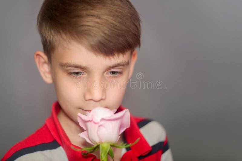 Jeune garçon beau dans des vêtements rouges reniflant une rose rose sur un fond gris photo libre de droits