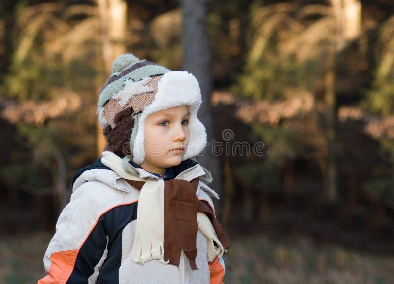 Jeune garçon dans une forêt photos libres de droits
