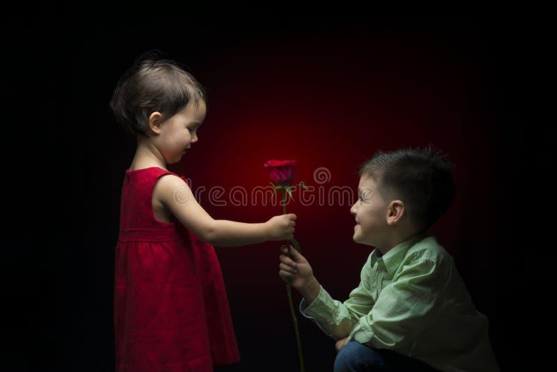 Jeune garçon donnant une rose à une petite fille photos stock