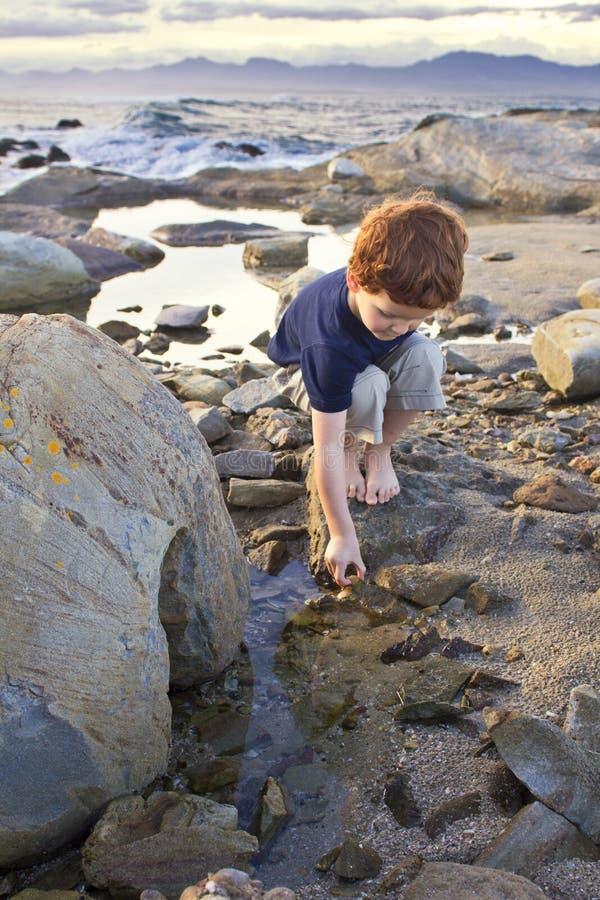 Jeune garçon explorant sur la plage image libre de droits