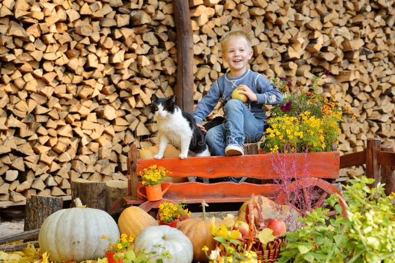 Jeune garçon heureux reposant avec les potirons et le chat Automne images stock