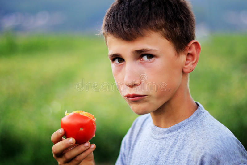 Jeune garçon mangeant la tomate fraîche image stock