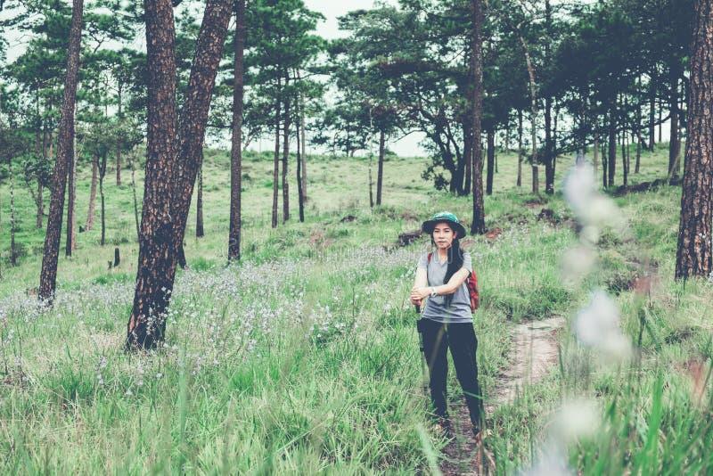Jeune hausse de touristes et randonneur de femme au conce de Forest Travel image libre de droits