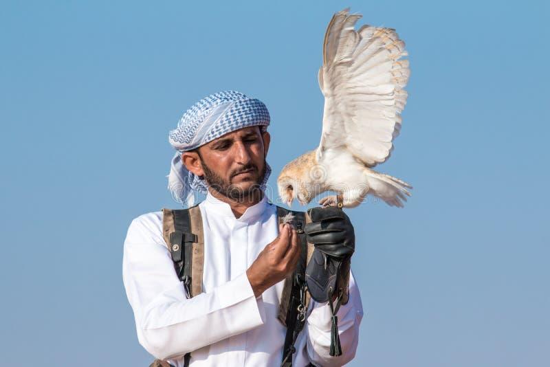 Jeune hibou de grange pendant une exposition de vol de fauconnerie à Dubaï, EAU photographie stock