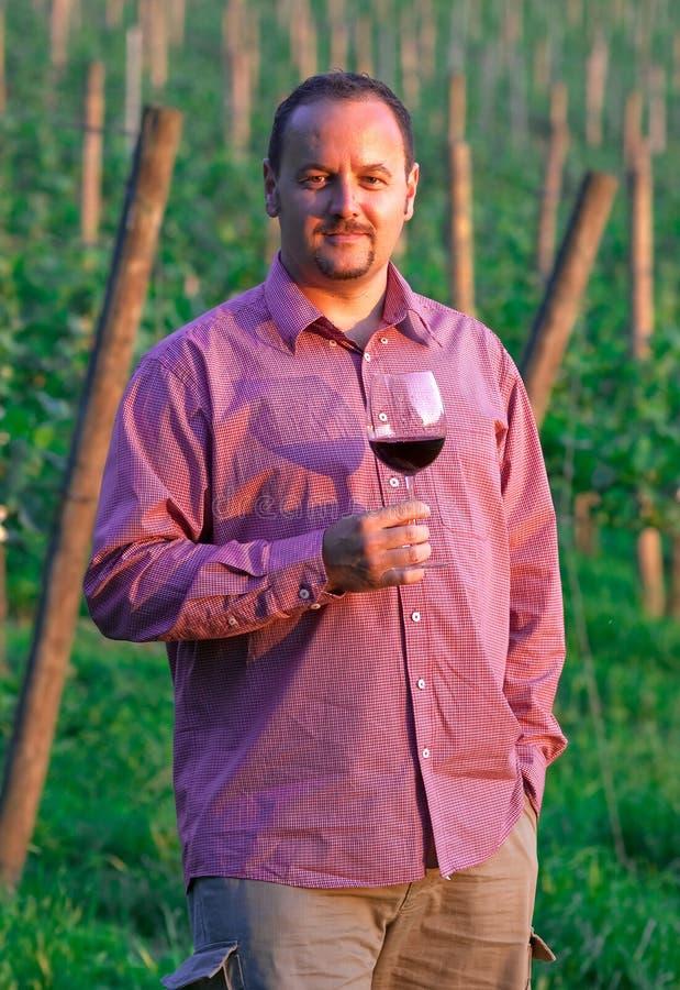 Jeune homme appréciant le vin rouge images libres de droits