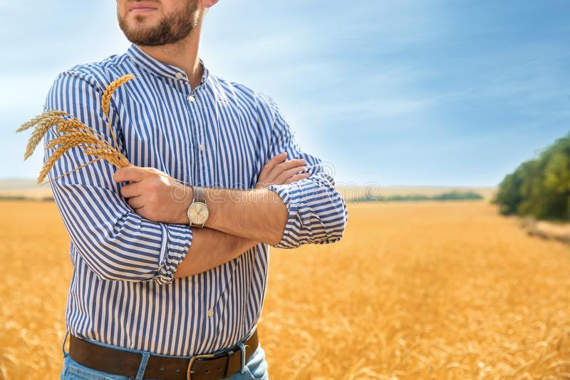 Jeune homme avec des transitoires dans le domaine de grain photos stock