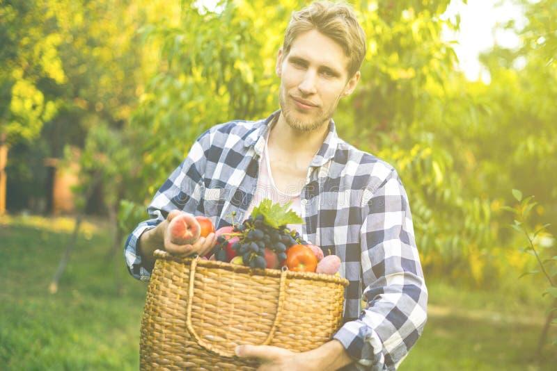 Jeune homme barbu dans la bio ferme naturelle organique d'eco avec la nourriture crue fraîche dans le panier un jour d'été photos stock