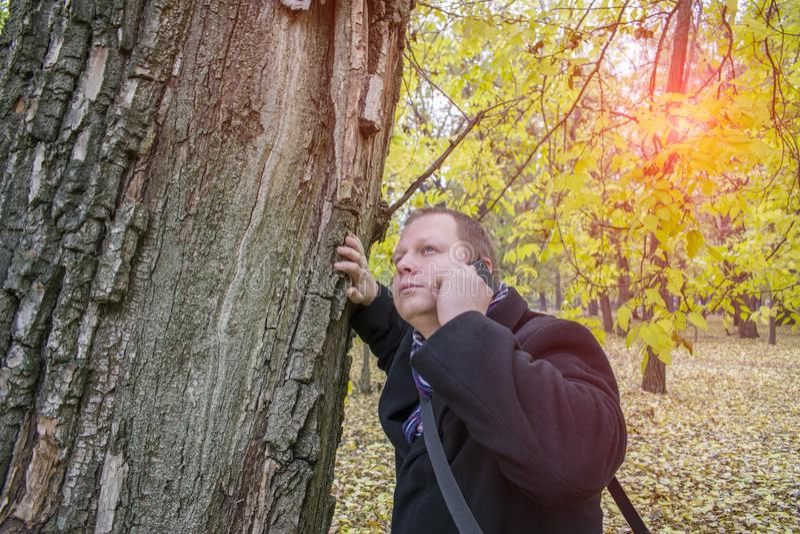 Jeune homme beau avec un smartphone sur la rue parlant en parc et recherchant Bel automne et beaucoup de feuilles jaunes photos libres de droits