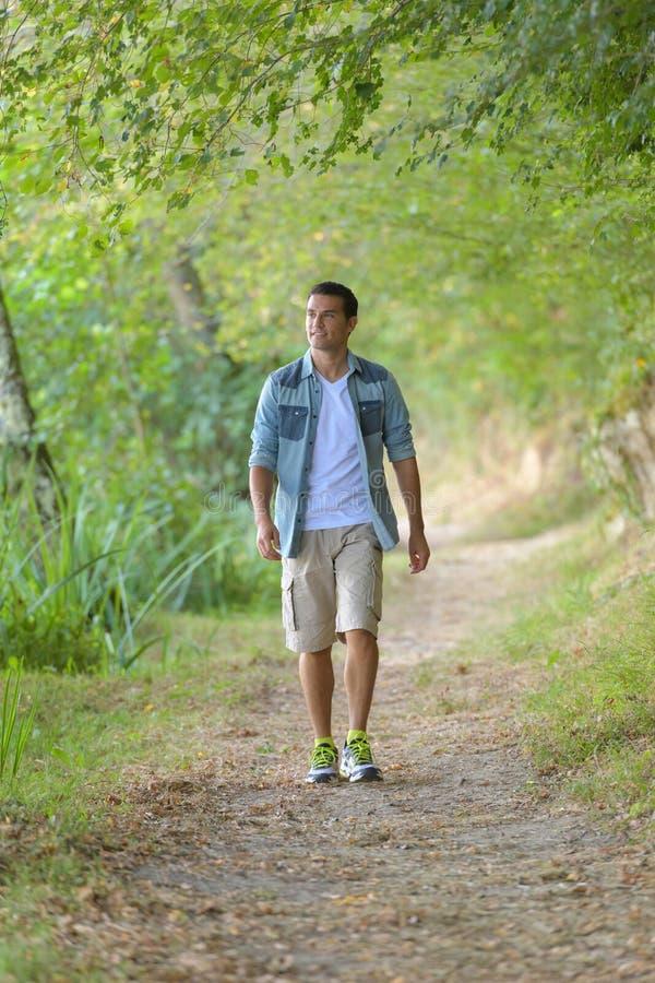 Jeune homme bel marchant dans la forêt images stock