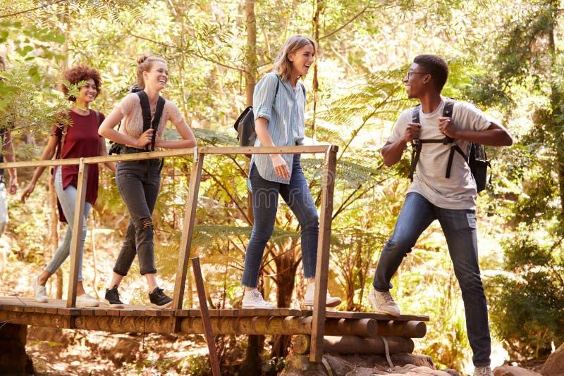 Jeune homme d'Afro-américain se tournant vers des amis comme ils croisent une passerelle pendant une hausse dans une forêt, intég image libre de droits