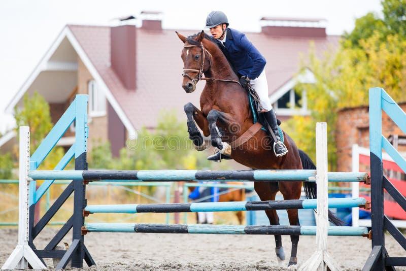 Jeune homme de cavalier sautant sur la concurrence équestre photographie stock libre de droits