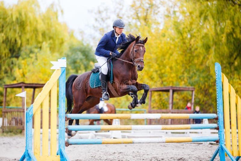 Jeune homme de cavalier sautant sur la concurrence équestre photo stock