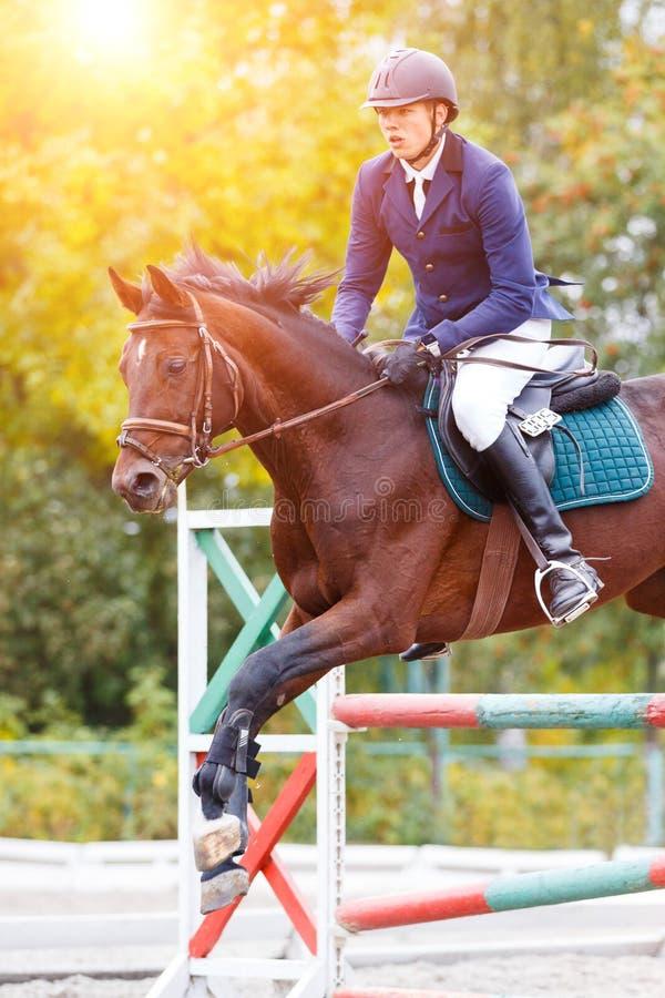 Jeune homme de cavalier sautant sur la concurrence équestre photos stock