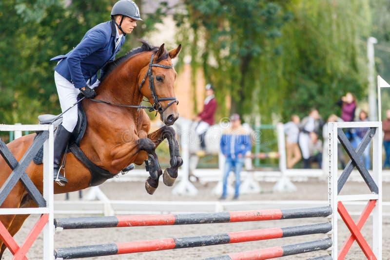 Jeune homme de cavalier sautant sur le cheval au-dessus de l'obstacle images stock