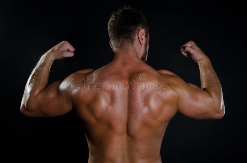 Jeune homme et dos musculaire photos libres de droits
