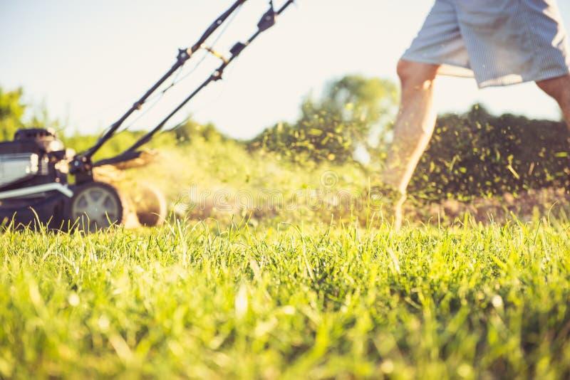Jeune homme fauchant l'herbe images libres de droits